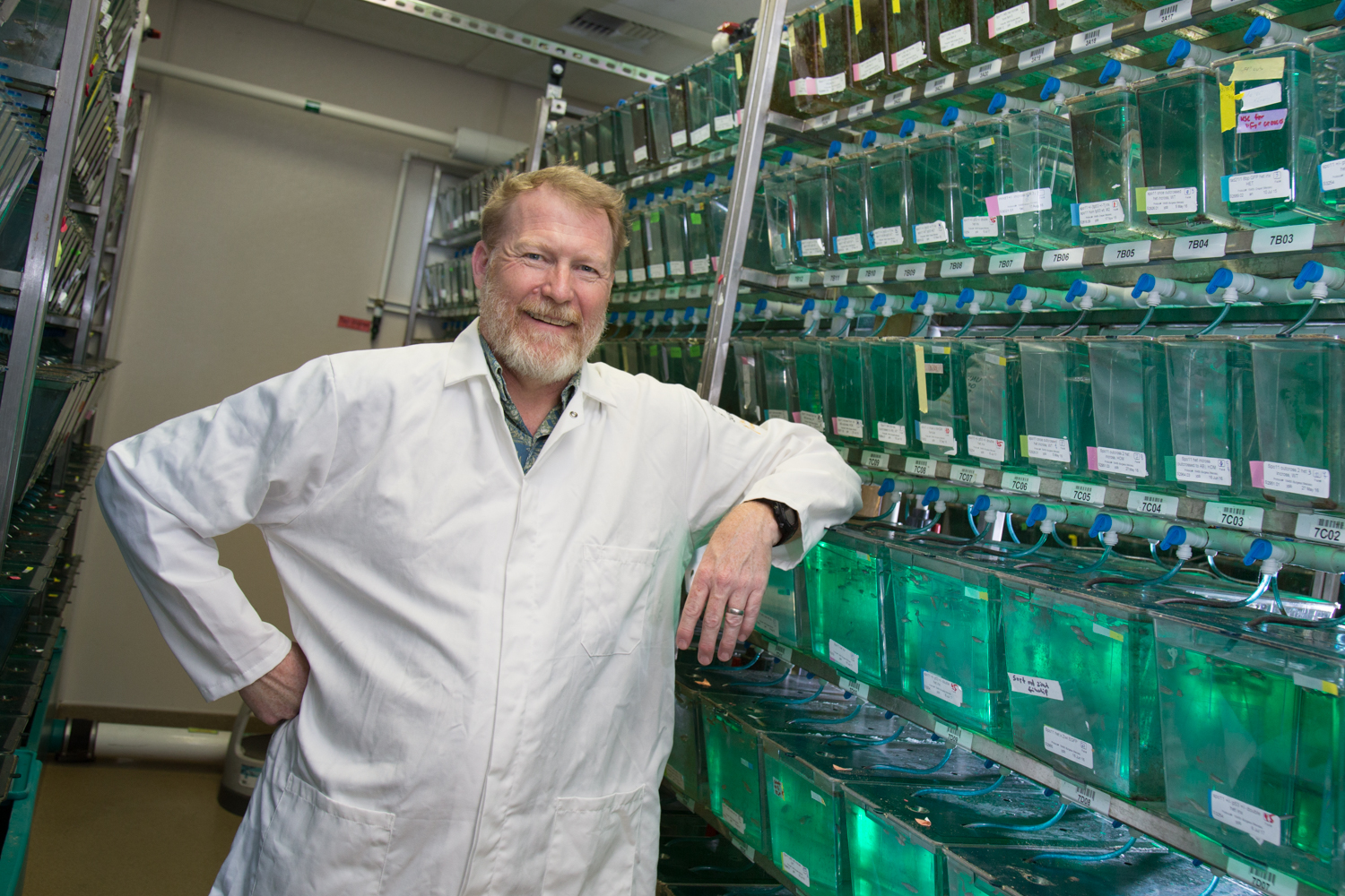 Bruce Draper stands in the zebrafish facility
