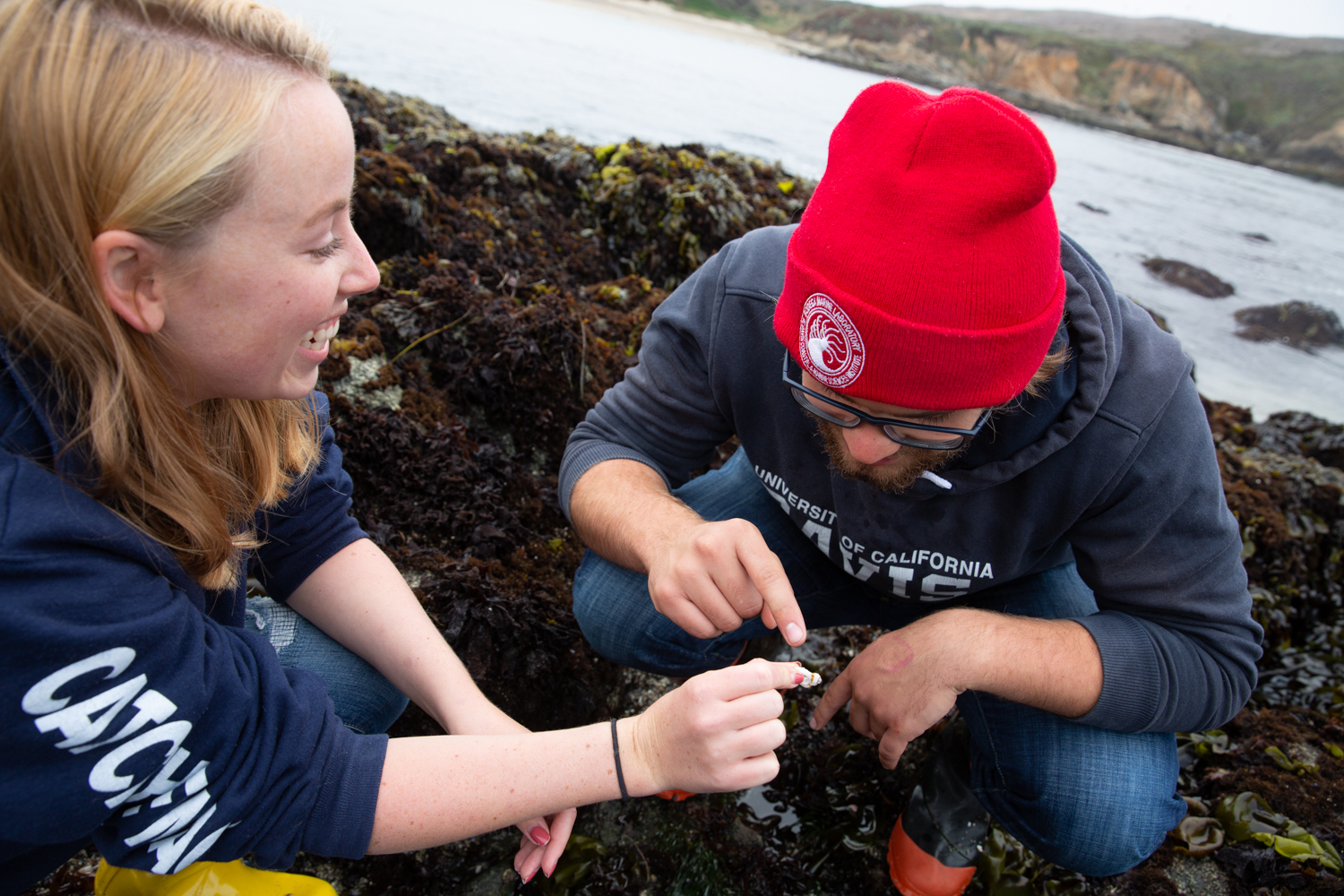Evan Tjeerdema and Holley Maassen explore the tide pools near the Bodega Marine Laboratory