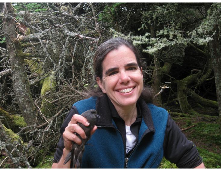 Gabrielle Nevitt holds a Leach's storm-petrel.