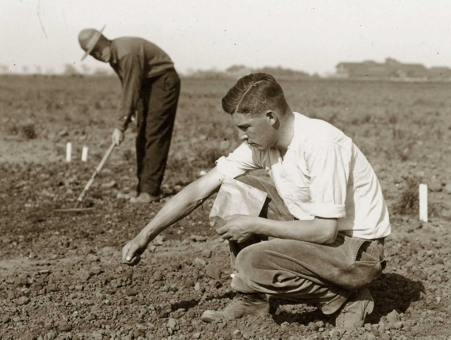 historical image of crop planting