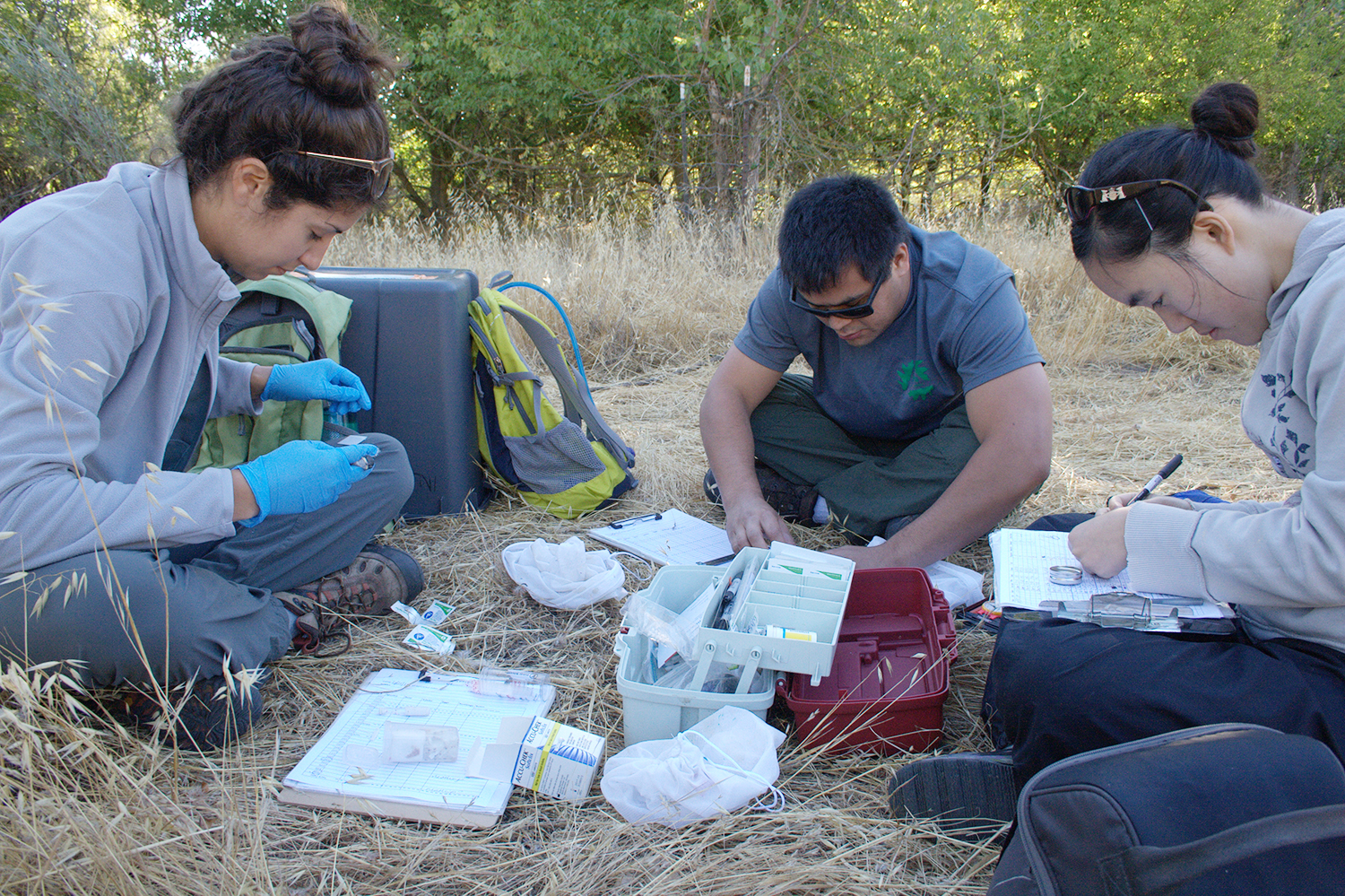 Injaian works with her mentees in the field. Courtesy photo