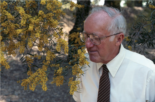 Professor Emeritus Eric Conn admires an acacia treee at the UC Davis Arboretum Eric E. Conn Acacia Grove.