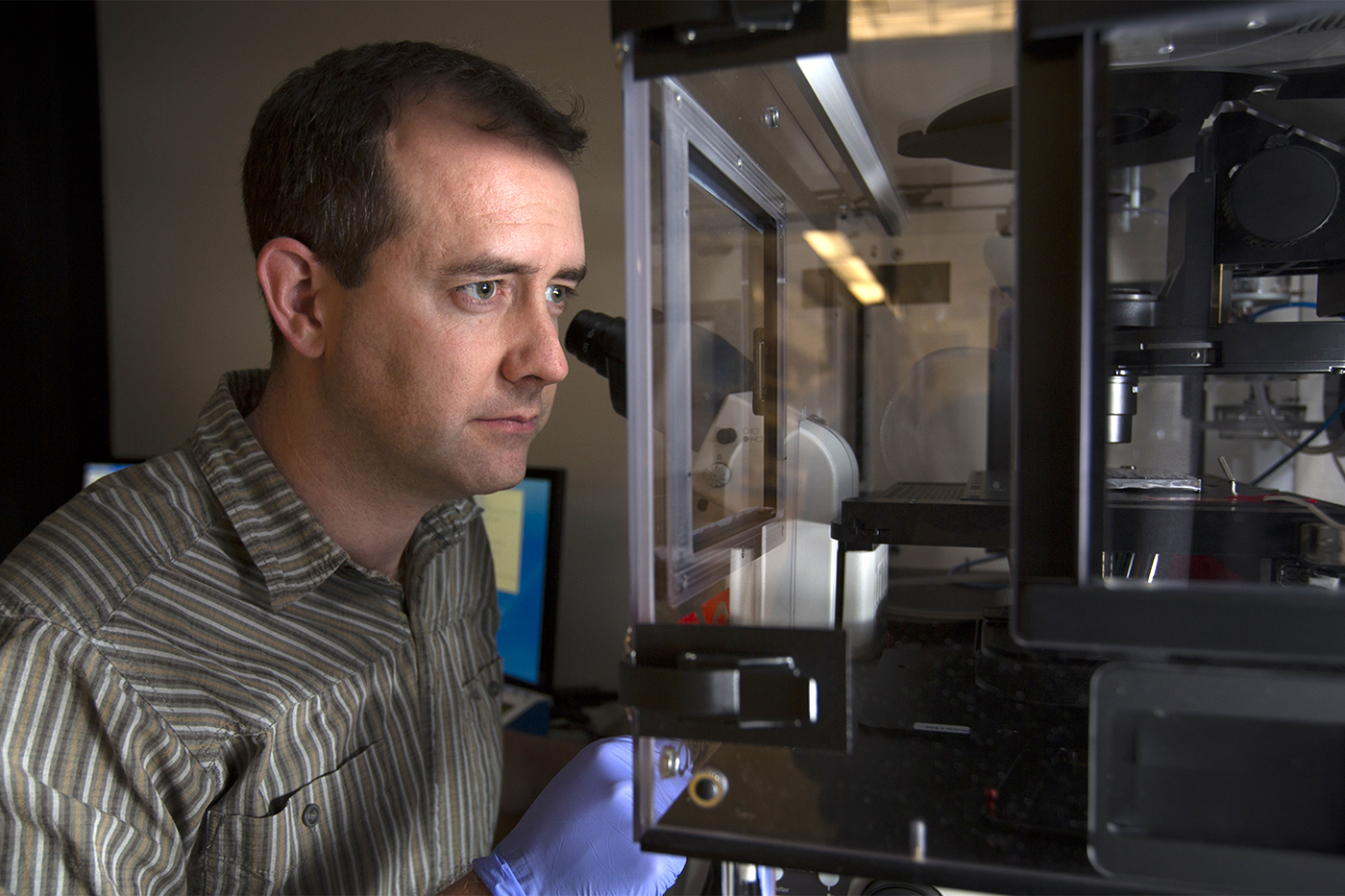 Sean Collins' lab uses automated microscopy to understand immune cell migration. Fred Greaves/UC Davis