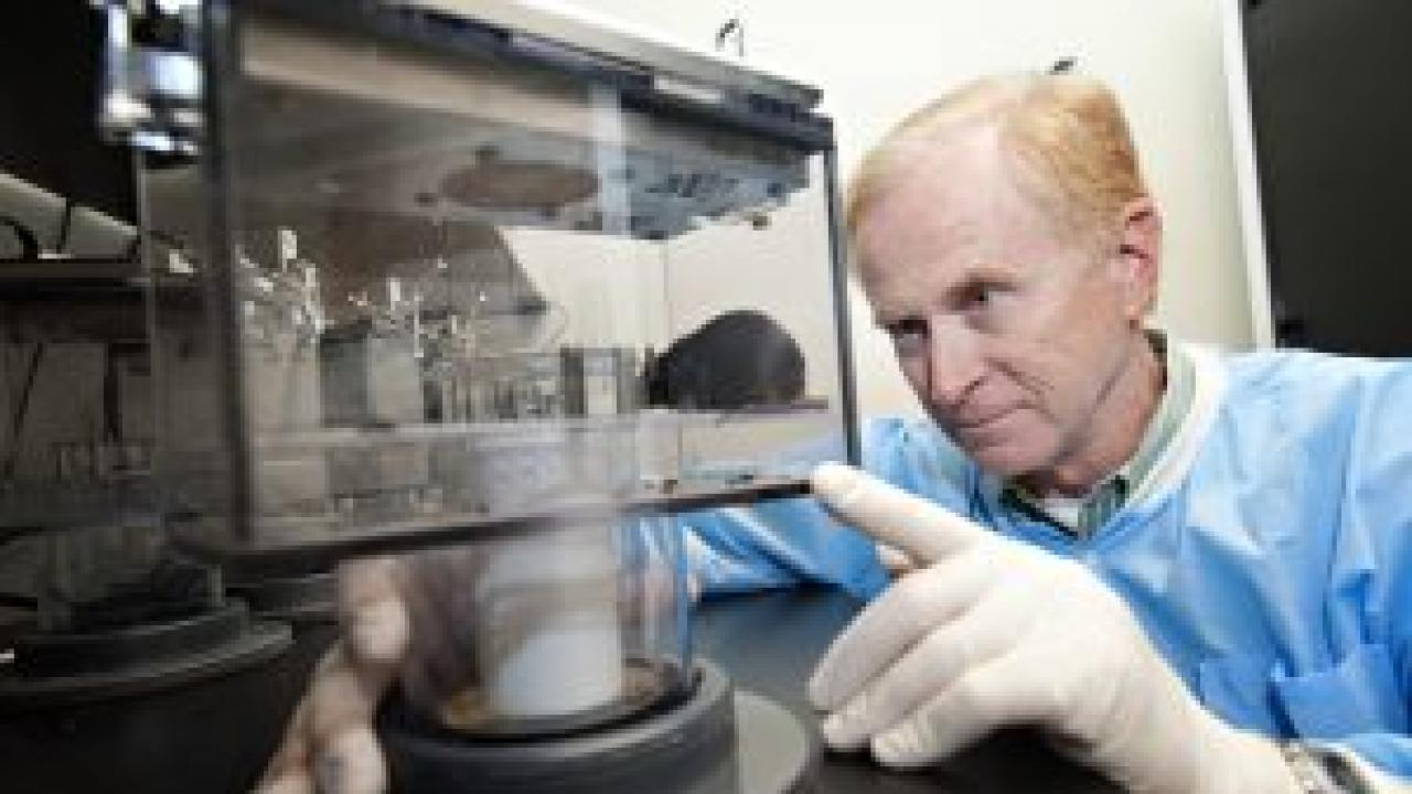 "Prof. Kent Lloyd, director of the UC Davis Mouse Biology Program, in the lab. Gene-edited and ""knockout"" mice have become a vital tool in biomedical research. (Karin Higgins/UC Davis photo)"