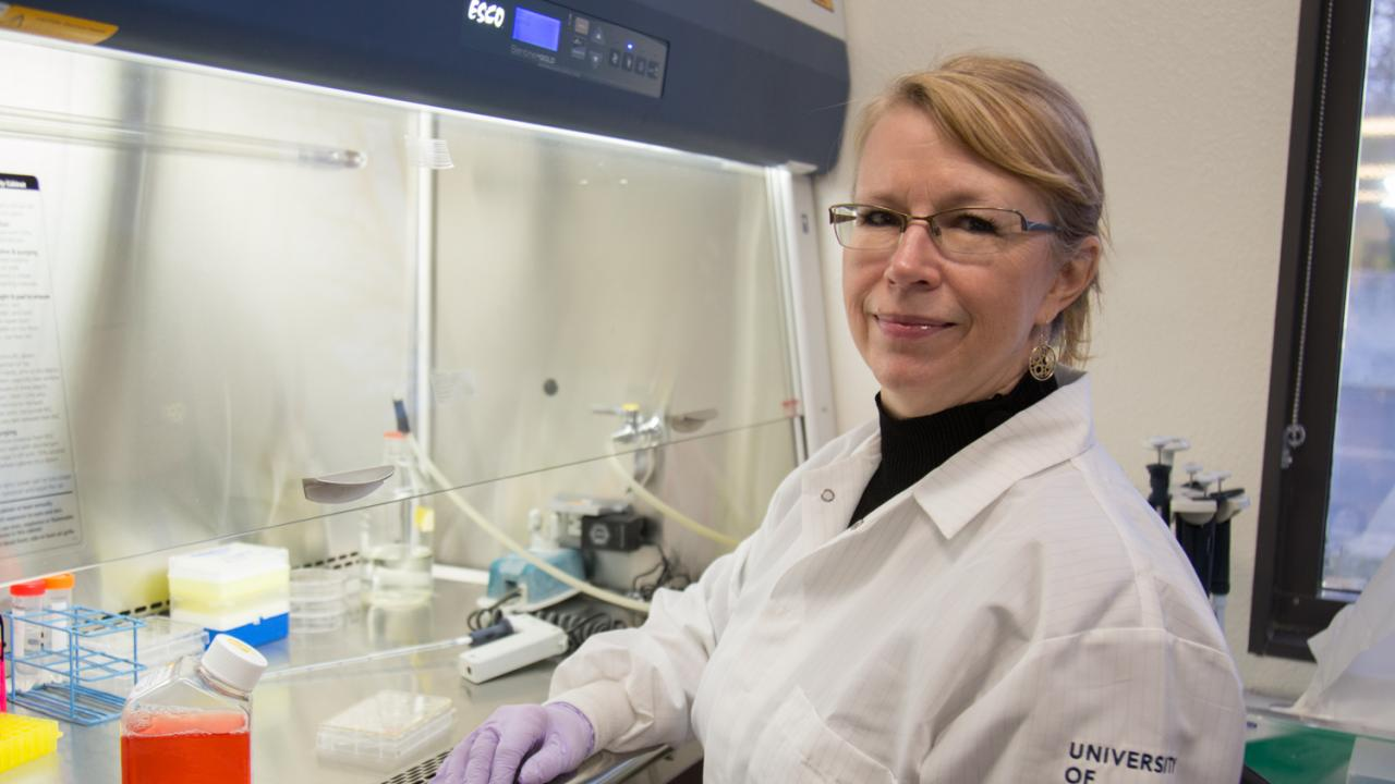 UC Davis Center for Neuroscience Associate Director Jennifer Whistler believes drug development is headed in the wrong direction when it comes to synthetic opioids. Her solution, design a synthetic opioid that mimics the body's natural pain reliever, endorphin. David Slipher/UC Davis
