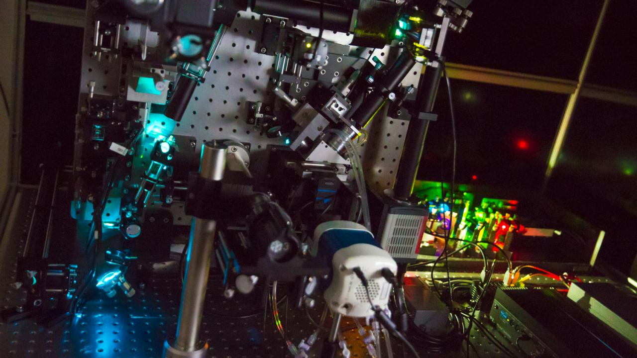 The lattice light-sheet microscope, which is housed within the Department of Molecular and Cellular Biology, was acquired by a joint effort with the Howard Hughes Medical Institute and eight campus groups. David Slipher/UC Davis