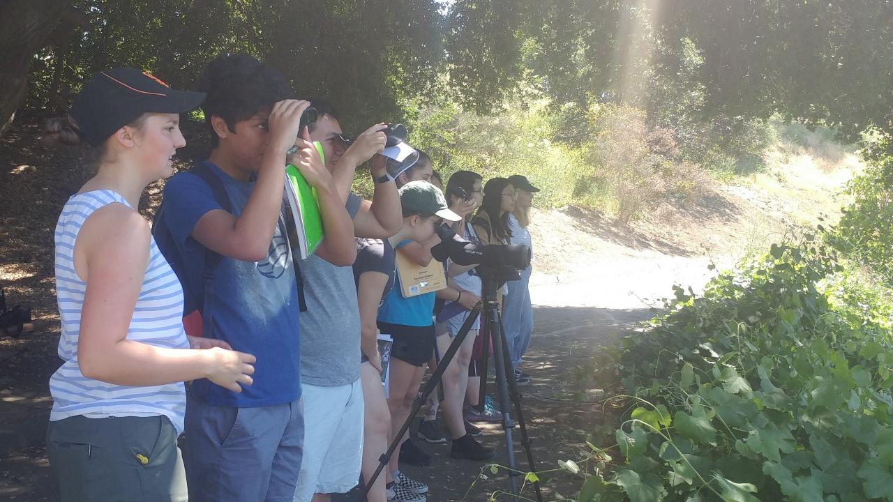 The Wild Davis class observes turtles in the Arboretum lake. Laci Gerhart-Barley