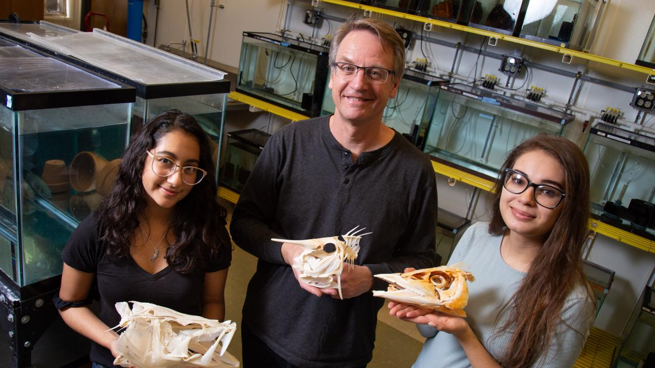 Wildlife, fish and conservation biology student Angelly Tovar, Professor Peter Wainwright and wildlife, fish and conservation biology student Victoria Susman stand in Wainwright's lab.