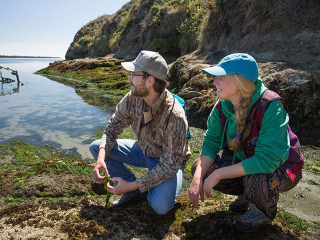 Students look across the water at Bodega Bay
