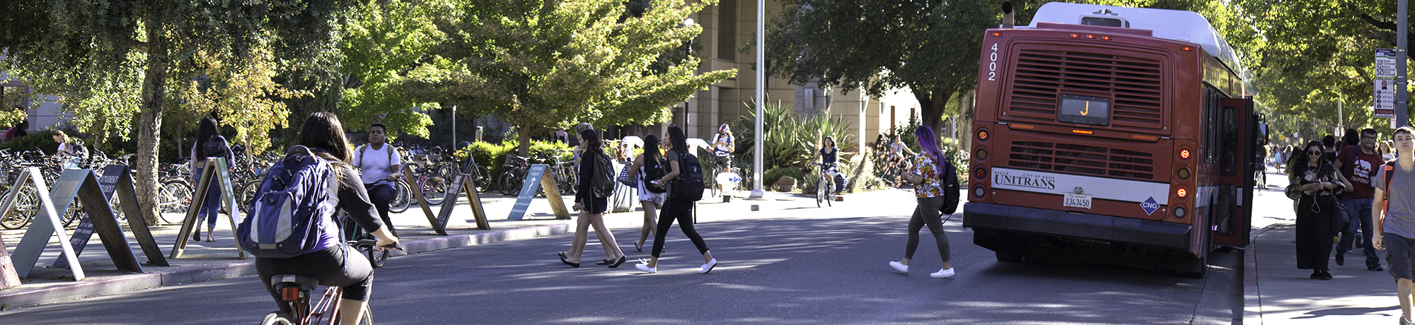 Students cross the street near the Sciences Lab Building