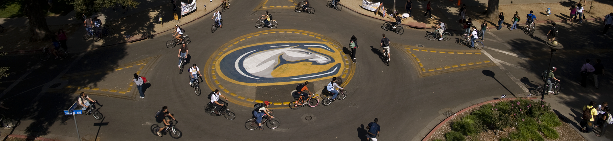 UC Davis bike roundabout with cyclists